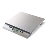 Salter food scale